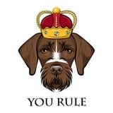 狗德国短毛指针画象 冠 狗国王 您统治字法 逗人喜爱的动物 向量 向量例证