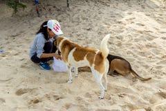 狗提供的女孩 库存图片