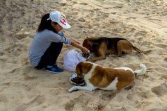 狗提供的女孩 免版税图库摄影