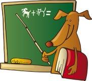 狗教师 免版税库存图片