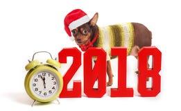 狗是2018个年和数字的标志 库存图片