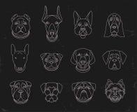 狗普遍的品种  在黑色的12个线性象 免版税库存图片