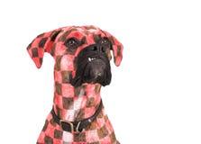 狗样式 图库摄影