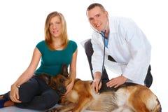 狗检查的女孩她的狩医年轻人 免版税图库摄影
