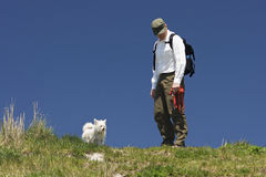 狗步行者在皮带自由的区域 图库摄影