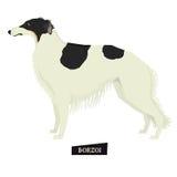 狗汇集俄国猎狼犬几何样式 皇族释放例证