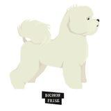 狗汇集Bichon Frise几何样式对象 免版税图库摄影
