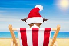 狗海滩睡椅圣诞节假日 库存照片