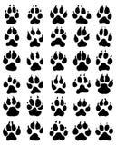 狗爪子印刷品  免版税库存图片