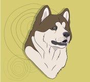 狗画象外形,看得下来 图库摄影