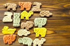 狗的可口色的动物学饼干以不同 库存图片