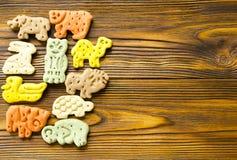 狗的可口色的动物学饼干以不同 免版税库存照片