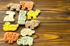 狗的可口色的动物学饼干以不同 免版税图库摄影