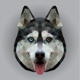 狗的多角形面孔 向量例证