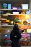 狗的妙境,一个开放冰箱 库存图片