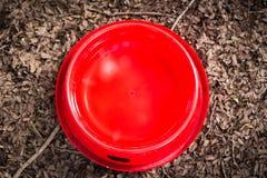 狗的红潮碗,被投入的干燥叶子 图库摄影