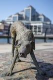狗的雕塑,一部分的饥荒雕塑,都伯林,爱尔兰。 免版税图库摄影