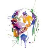 狗色的画象在流行艺术技术的 库存图片