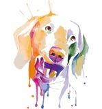 狗色的画象在流行艺术技术的 图库摄影