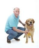 狗获得了一枚金黄奖牌 库存图片