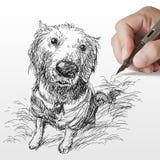 狗被画的金黄现有量猎犬 皇族释放例证
