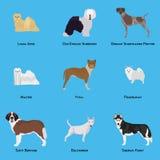 狗设置了 免版税库存图片