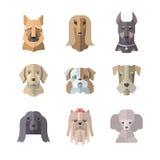 狗象的汇集在平的样式的 库存照片