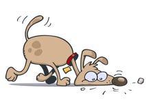 狗跟踪 免版税库存照片