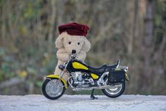 狗软的玩具在摩托车后站立 免版税库存照片