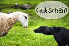 狗遇见绵羊,德国词Gutschein手段证件 免版税库存图片