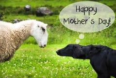 狗遇见绵羊,文本愉快的母亲节 免版税库存图片