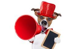 狗销售扩音机 免版税库存照片