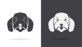 狗长卷毛狗面孔的传染媒介图象 图库摄影
