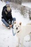 狗雪撬 免版税库存图片