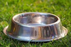 狗食的特写镜头空的金属碗坐绿草,动物营养品概念 库存图片