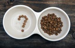 狗食问题标志 免版税库存图片