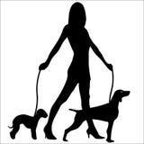 狗魅力剪影走的妇女 免版税库存图片