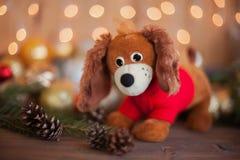 狗,圣诞节装饰的年在占星的 免版税库存图片