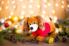 狗,圣诞节装饰的年在占星的 免版税图库摄影