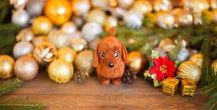 狗,圣诞节装饰的年在占星的 免版税库存照片