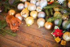 狗,圣诞节装饰的年在占星的 库存图片