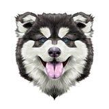 狗头对称剪影向量图形 皇族释放例证