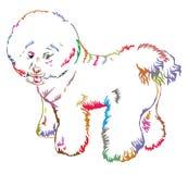 狗Bichon Frise传染媒介五颜六色的装饰常设画象  库存图片