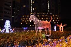 狗LED光展示一个在泰国照明节日的中国黄道带2017年 库存图片