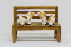 狗Shih在长木凳的慈济Cerimic在公园 库存图片