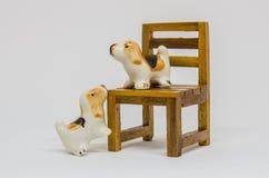 狗Shih在长木凳的慈济Cerimic在公园 免版税图库摄影