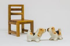 狗Shih在长木凳的慈济Cerimic在公园 库存照片