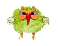 狡猾猫头鹰由绿色菜做成在被隔绝的背景 免版税库存图片