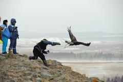 狩猎大师的国际比赛与狩猎鸟的 免版税库存照片