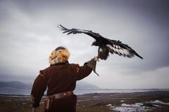 狩猎大师的国际比赛与狩猎鸟的 免版税库存图片